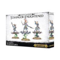 Warhammer Age of Sigmar: Tzeentch Arcanites - Tzaangor Enlightened